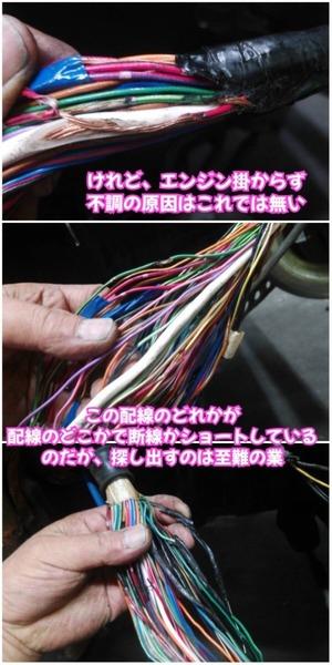 0707CA25-8555-4EC3-A577-7EADB4AAB66C.jpeg