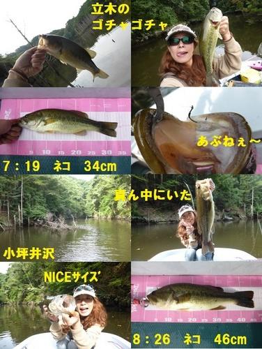 15-2.jpg