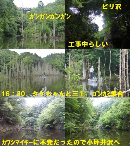 16-19.jpg