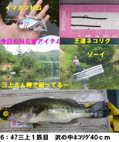 16-6.jpg