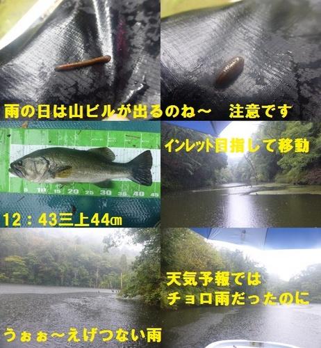 16-7.jpg