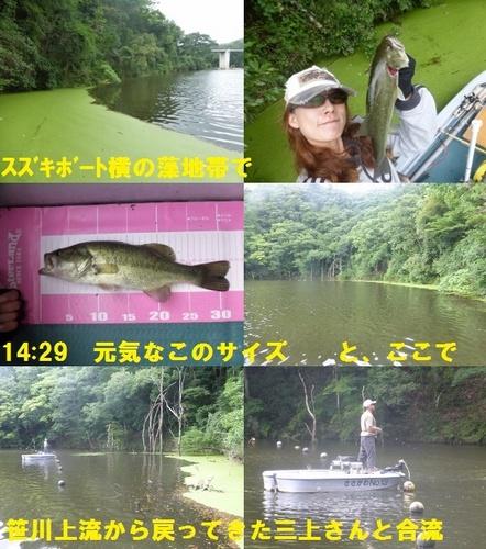 17-10.jpg