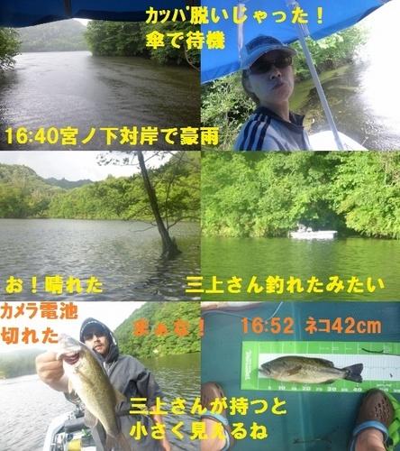 17-13.jpg