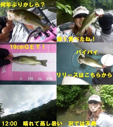 17-8.jpg