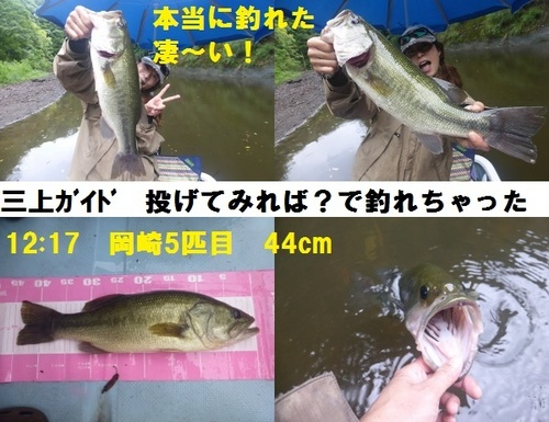 18-8.jpg