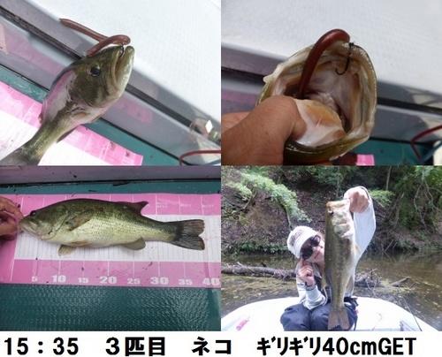 2-6.jpg