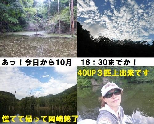 2-7.jpg