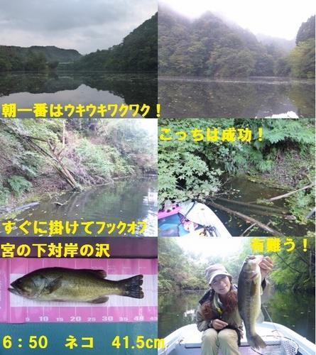 21-2.jpg