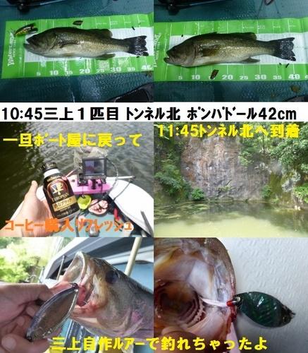 23-7.jpg