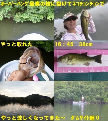 24-12.jpg