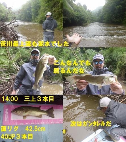 26-10.jpg