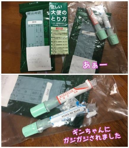 392F91C5-8F0C-4ED1-B6AD-4032BE5F2FC7.jpeg