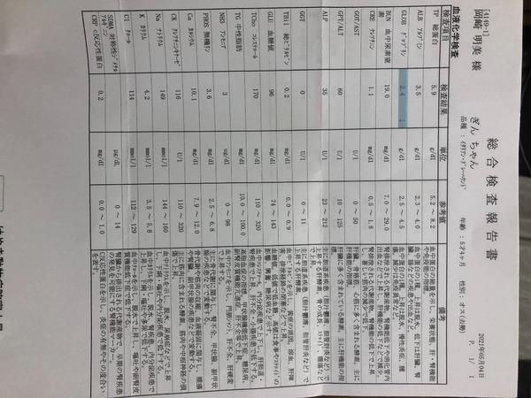 445A81C2-EC24-41A5-9ABA-7C92CAD6FE64.jpeg