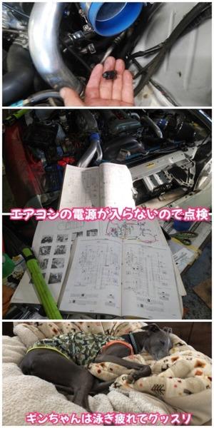 4CD70FF0-87D6-493E-8ECC-F242B3720F70.jpeg