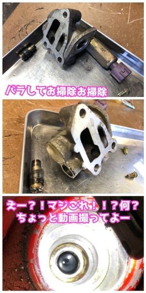 503BA8F5-BD75-4C12-BDFC-0681BA4D660E.jpeg