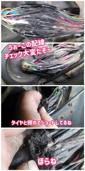 81B91F0A-308F-4747-A71D-4AC636A1806F.jpeg