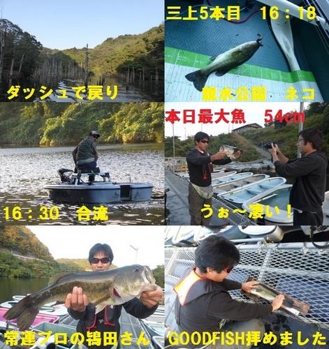9-9.jpg