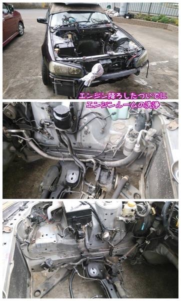 F255C92E-23D7-43AA-8314-F11208C89ACB.jpeg