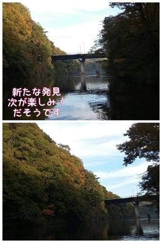 IMG_3207 (400x600).jpg