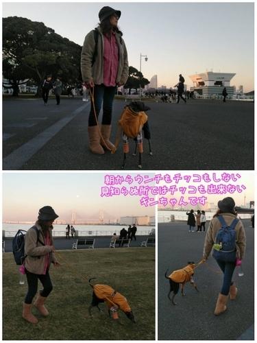 IMG_3739 (600x800).jpg
