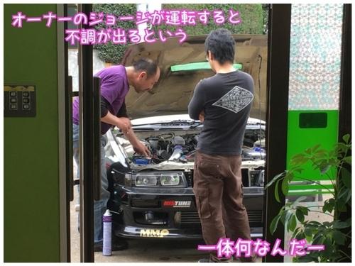 IMG_6005 (600x450).jpg