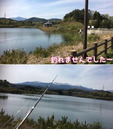 IMG_7802.JPG