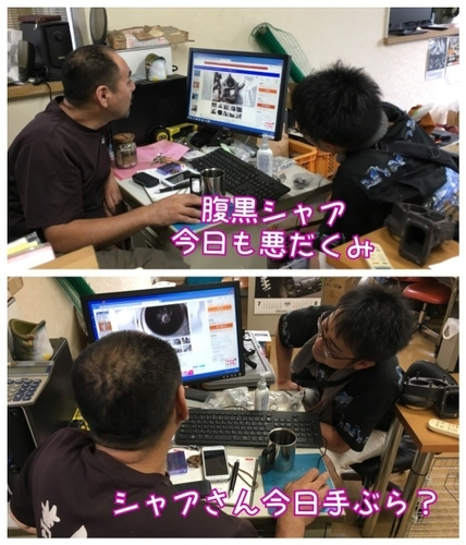 IMG_8905 (514x600).jpg