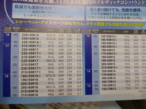 P1040571.JPG