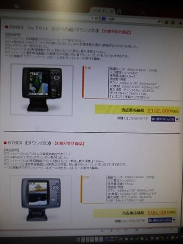 P1060672 (450x600).jpg
