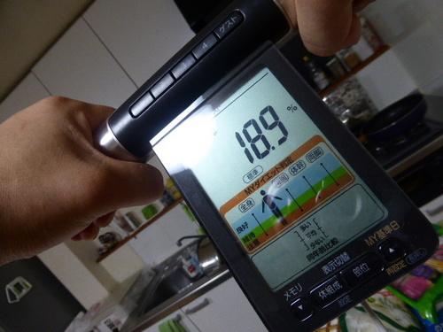 P1100132.JPG